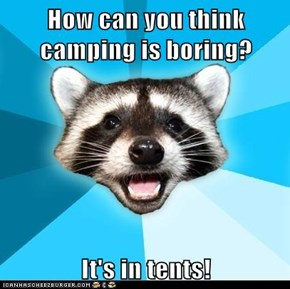 How can you think camping is boring?  It's in tents!