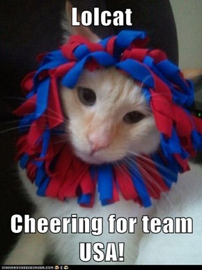 Lolcat  Cheering for team USA!