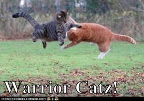 Warrior Catz!