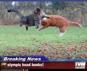 Breaking News - olympic head bonks!
