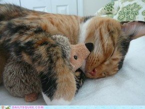 Reader Squee: Snuggle Buddies