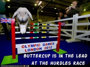 Kamp Olimpiks - Bunny Hurdles