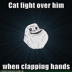 Cat fight over him  when clapping hands