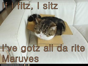 If I fitz, I sitz  I've gotz all da rite Maruves