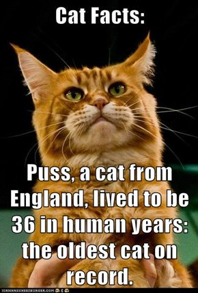Puss, a cat from England, lived to be 36 in human years: the oldest cat on record.