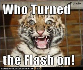 Who Turned  the Flash on!