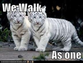 We Walk  As one