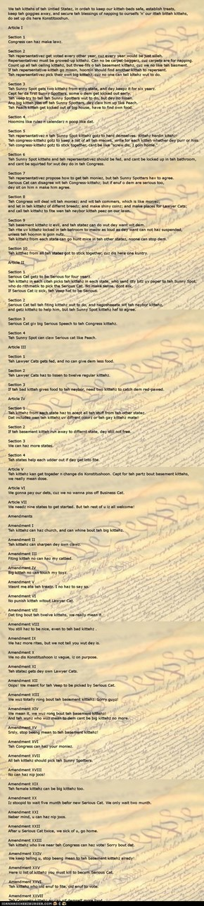 The LOLcat Constitution