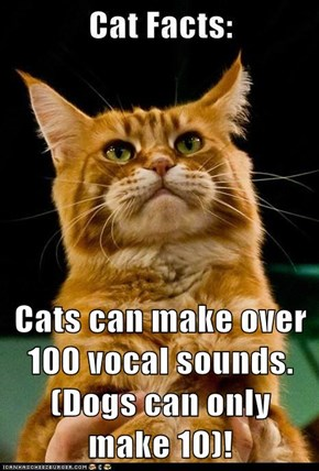 Cats can make over 100 vocal sounds. (Dogs can only make 10)!
