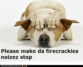 Firecrackies noizez are scary to pets.  Keep your pets safe and in a quiet room.  More pets are lost on the 4th of July than any other time.