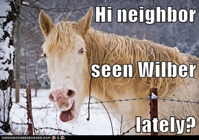 Hi neighbor seen Wilber lately?