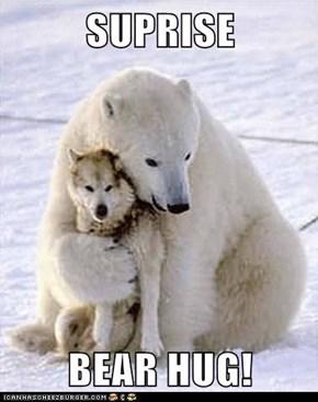 SUPRISE  BEAR HUG!