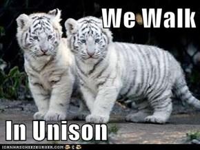 We Walk  In Unison