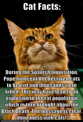 During the Spanish Inquisition, Pope Innocent VIII declared cats to be evil and thousands were killed. This may have lead to an explosion in the rat population which in turn brought about the Black Death. The message is clear, don't mess with cats!
