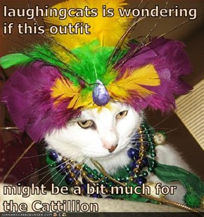 laughingcats is wondering if this outfit  might be a bit much for the Cattillion