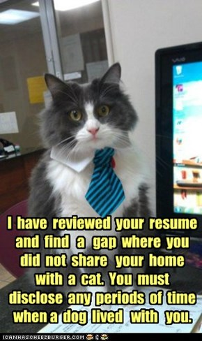 I  have  reviewed  your  resume and  find   a   gap  where  you  did  not  share   your  home with  a  cat.  You  must  disclose  any  periods  of  time  when a  dog  lived   with   you.