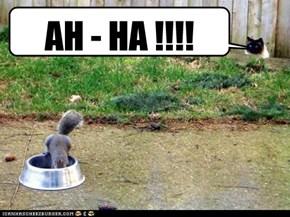 AH - HA !!!!