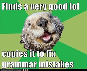 OCD Otter: My Favorites List Must be Perfect