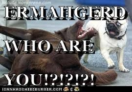 ERMAHGERD WHO ARE YOU!?!?!?!