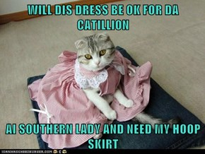 WILL DIS DRESS BE OK FOR DA CATILLION  AI SOUTHERN LADY AND NEED MY HOOP SKIRT