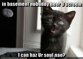 in basement nobuddy heer U screem  I can haz Ur soul nao?