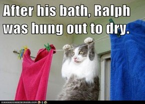 After his bath, Ralph was hung out to dry.