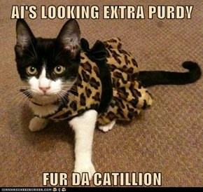 AI'S LOOKING EXTRA PURDY  FUR DA CATILLION