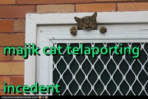 majik cat telaporting incedent