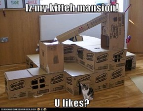 Iz my kitteh mansion!  U likes?