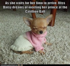 As she waits for her limo to arrive, Miss Daisy dreams of meeting her prince at the Catillion Ball