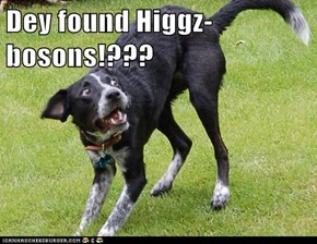 Dey found Higgz-bosons!???