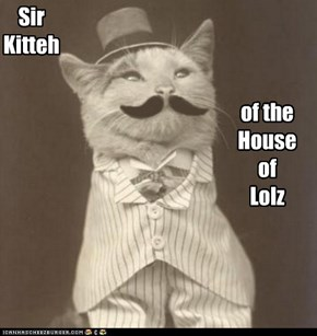 Sir Kitteh of the House of Lolz