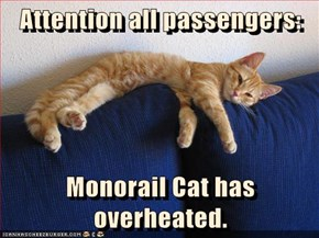 Attention all passengers:  Monorail Cat has overheated.