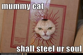 mummy cat  shall steel ur soul