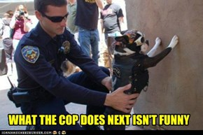 WHAT THE COP DOES NEXT ISN'T FUNNY