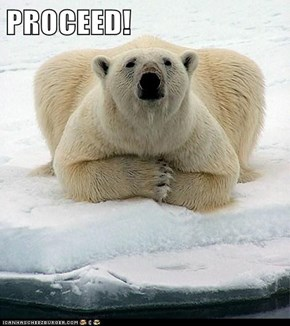 PROCEED!