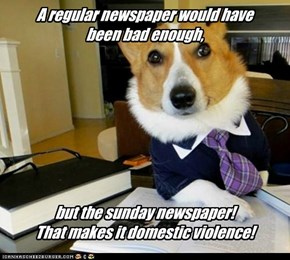 A regular newspaper would have been bad enough,          but the sunday newspaper!  That makes it domestic violence!