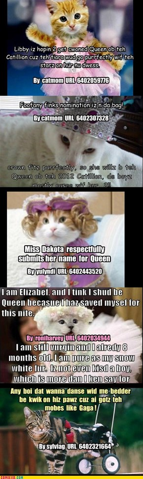 Queen of the Cattillion Voting LOL, 2 of 2. Due to comix size limitations I had to manually add and reposition some of the text. URLS of original LOL on each panel. Let razuli or myself know which one you wish to vote for. Dis iz jus for fun!