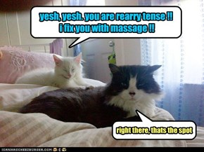 i can haz asian massage