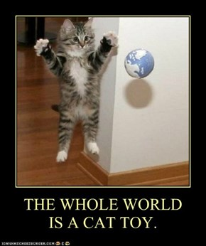 THE WHOLE WORLD IS A CAT TOY.