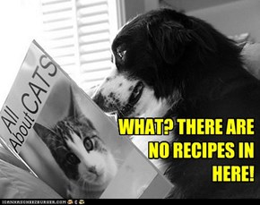 WHAT? THERE ARE NO RECIPES IN HERE!