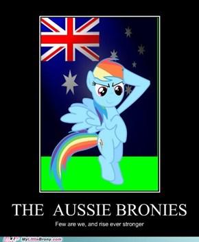 The Aussie Brony