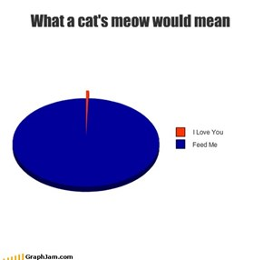 What a cat's meow would mean
