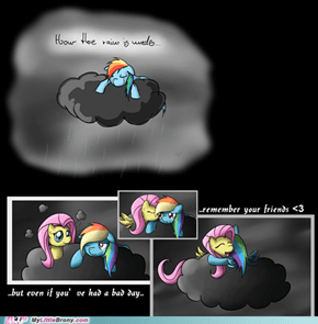 Don't cry, Dashie...
