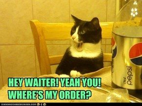 HEY WAITER! YEAH YOU! WHERE'S MY ORDER?