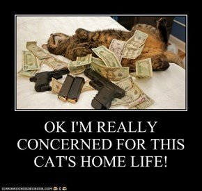 OK I'M REALLY CONCERNED FOR THIS CAT'S HOME LIFE!