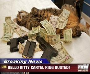 Breaking News - HELLO KITTY CARTEL RING BUSTED!