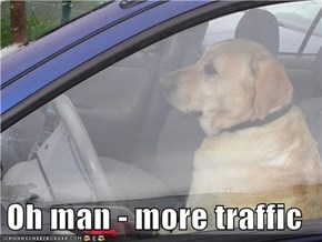 Oh man - more traffic