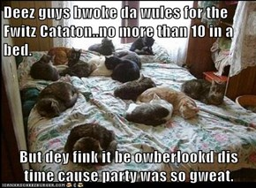 Deez guys bwoke da wules for the Fwitz Cataton..no more than 10 in a bed.  But dey fink it be owberlookd dis time cause party was so gweat.