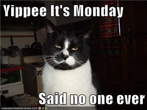 Yippee It's Monday  Said no one ever